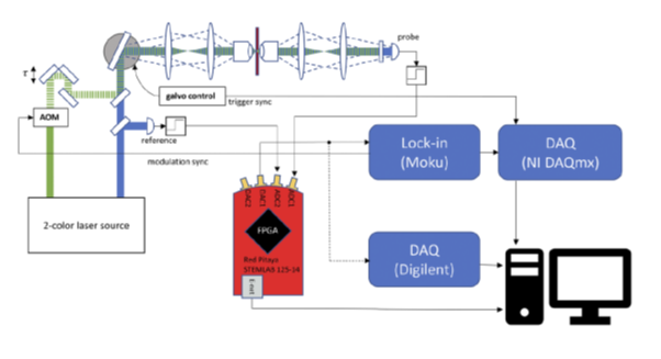 DR-RINS: Digital real-time relative intensity noise suppressor for pump–probe spectroscopy and microscopy